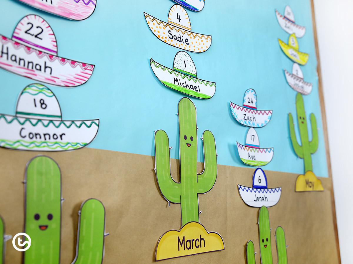 Birthday Wall Display - cactus