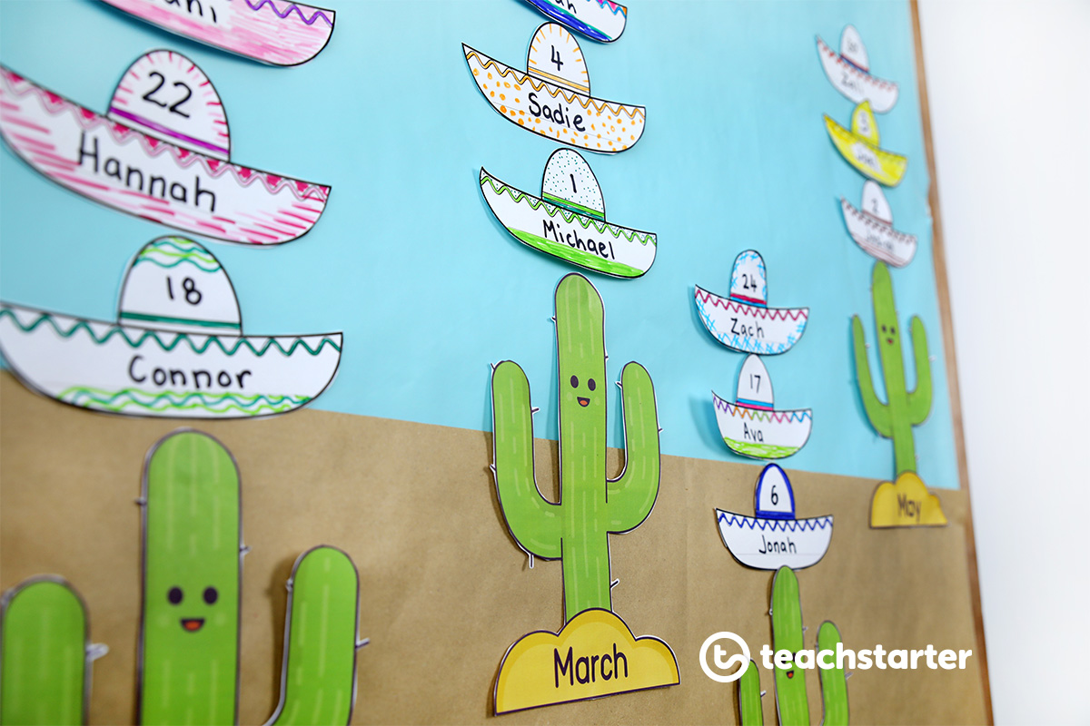 Cactus and Sombrero - Mexican themed birthday board