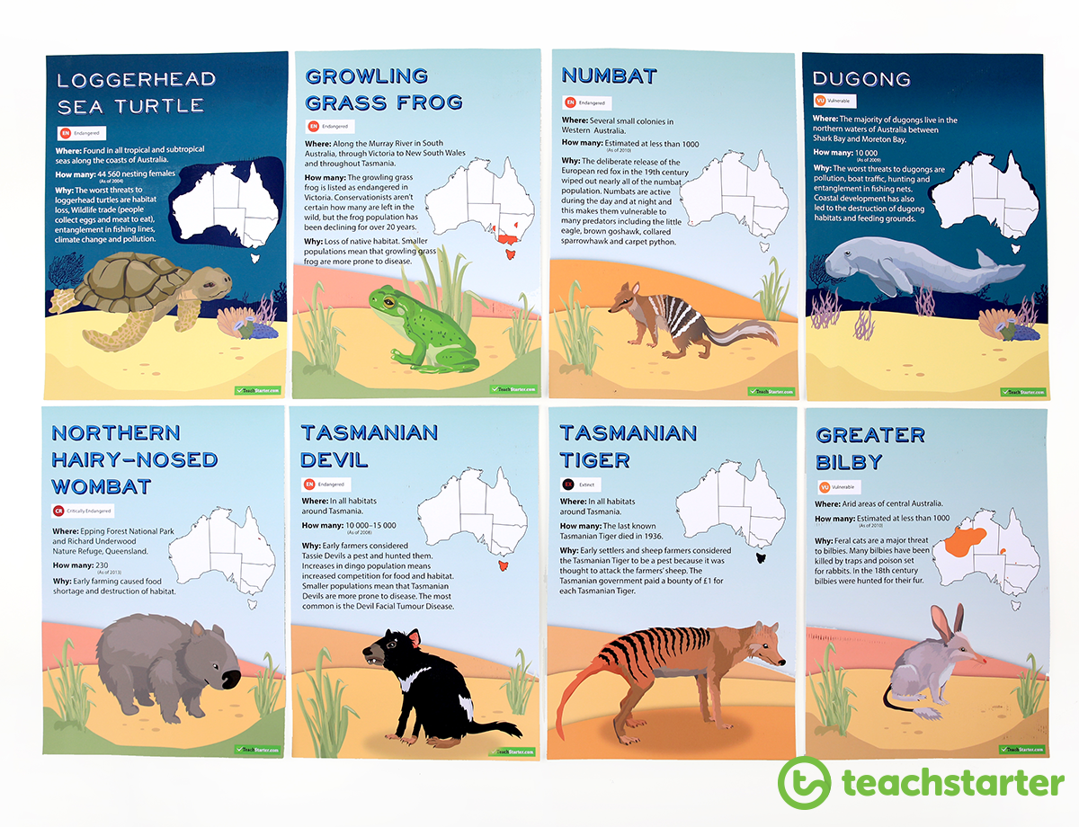Australian Endangered Animals Posters for the Classroom