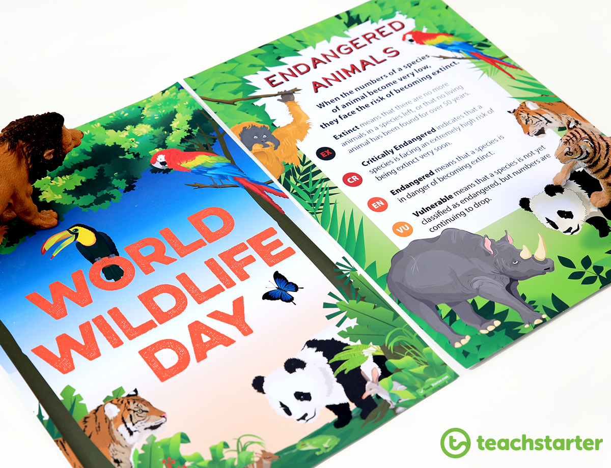 World Wildlife Day resources in the Classroom