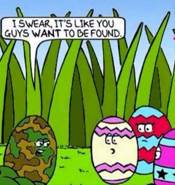 I swear it's like you guys want to be found - camoflage egg speaks to colourful easter eggs