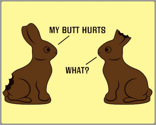 "one chocolate bunny with his tail missing says ""my butt hurts"" to another chocolate bunny with its ears missing who replies ""what?"""