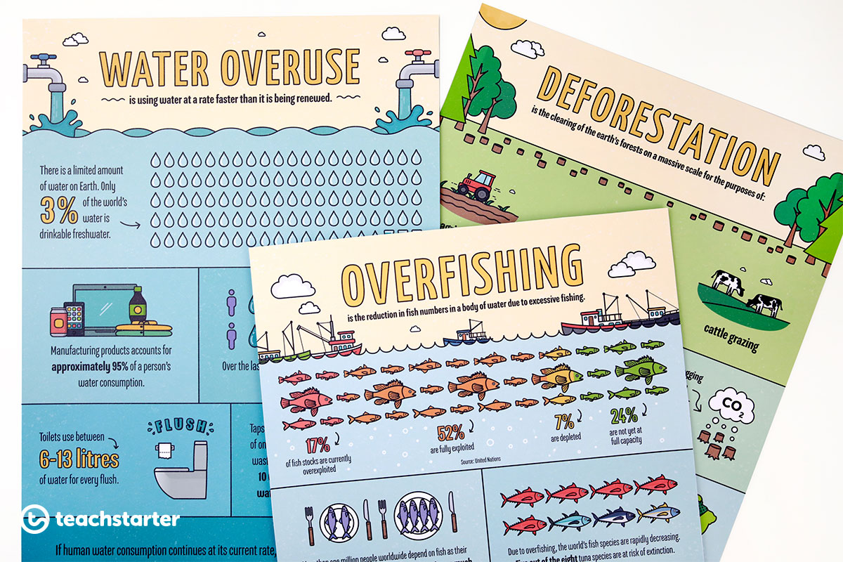Sustainability Issues Infographics Posters