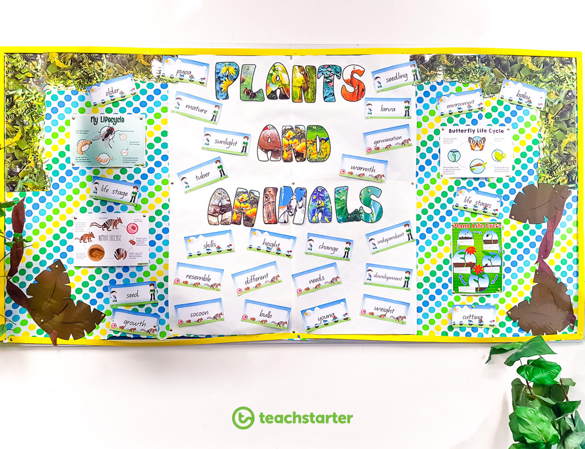 45 Sustainable Practices for the Environmentally Friendly Classroom - Fabric Display