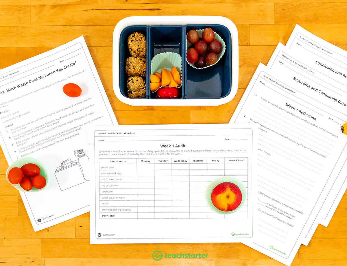 Student Lunch Box Audit