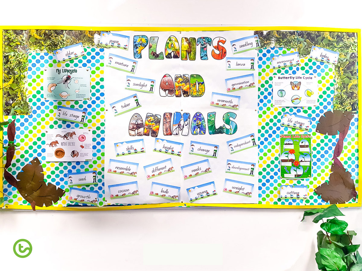 End of year organisation - classroom displays