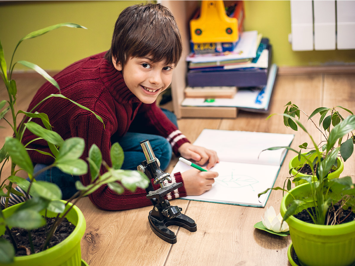Plant Power | 5 Benefits of having plants in the classroom - plants improve wellbeing