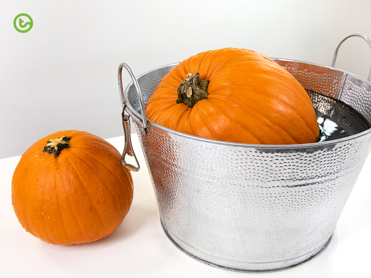 Pumpkin Science - Sink or float?
