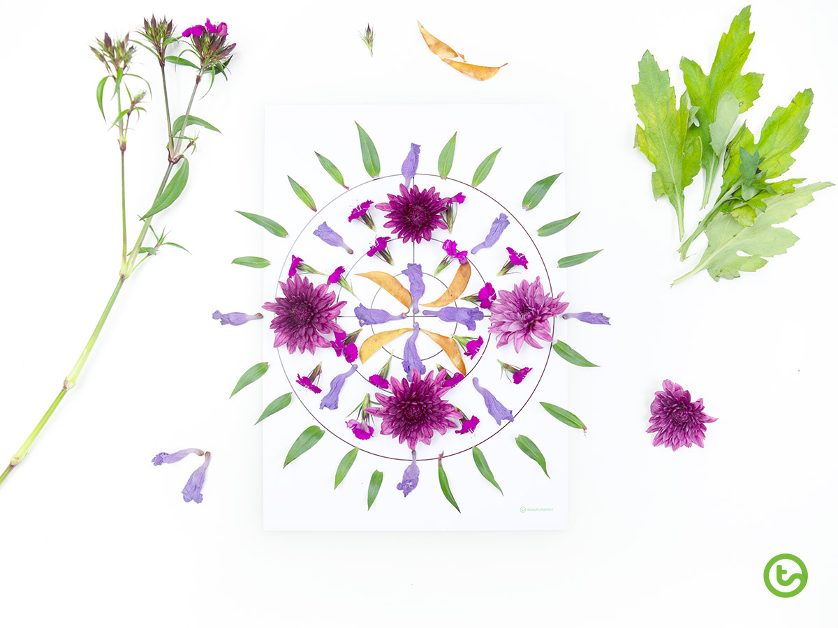 Using Natural Resources in the Classroom - Flower Mandala