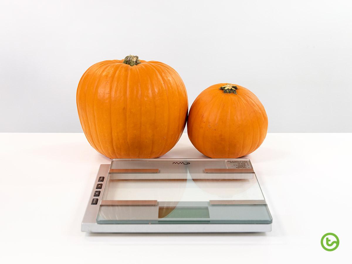 a Halloween Math activity that explores mass.