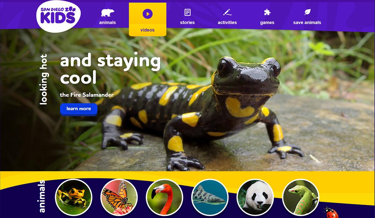 Virtual Excursions for Kids - San Diago Zoo